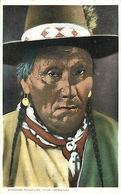 American Native Canadian Indian Life Chief Daywalker