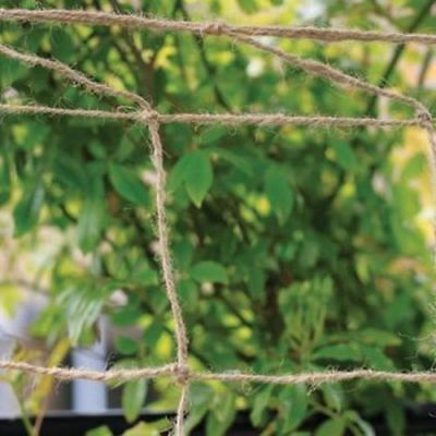 Jute Netting Gardening Outdoor Thick Durable Peas Beans Climbing Plants Support