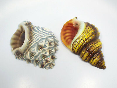 Vintage Pair of Japan Small Designed Conch Shell Wall Pockets, E-2290 & E-2291