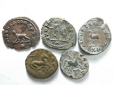 Lot of 5 Quality Ancient Roman Coins; Gallienus Zoo-Hippocamp...; 12.3 Grams!