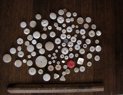 vintage antique mother of pearl button bulk lot with carved and shank back style
