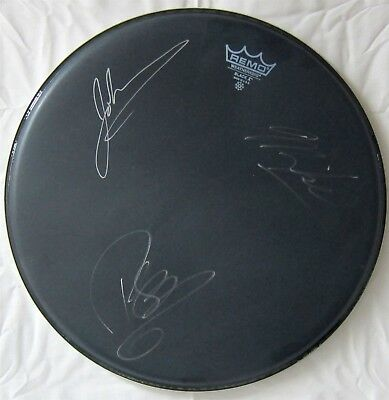 GOO GOO DOLLS authentic autographed DRUM HEAD band signed x3 2007 concert tour