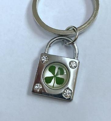 charming real four leaf clover keychain Jewelry