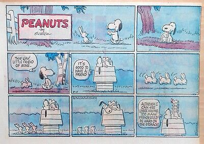 Peanuts by Charles Schulz - large half-page color Sunday comic - August 11, 1963