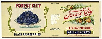 FOREST CITY Vintage Black Raspberries  **AN ORIGINAL 1920's TIN CAN LABEL** F39