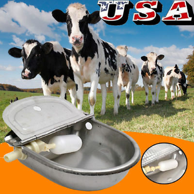 Automatic Farm Grade Stainless Stock Waterer Horse Goat Sheep Pig Dog Water