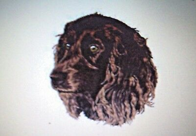 Boykin Spaniel ALL DOG BREEDS Personalized Gift Embroidered Tote bag