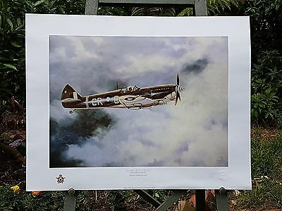Spitfire Aviation Limited Aviation Print, Ace of Spades