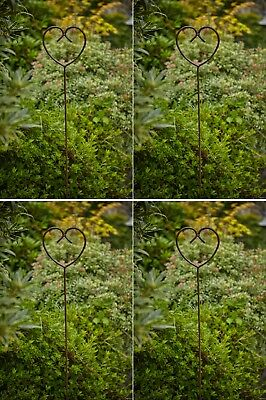 Rusty Metal Plant Stake 1.5m Rusted Rustic Garden Decor Olive Tree Support