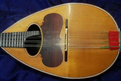 Mandolino Calace 1924 perfect conditions with video file sound