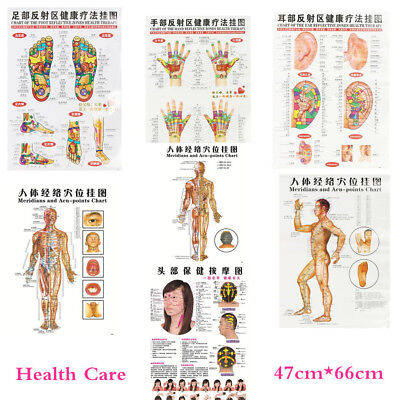 7pcs English Acupuncture Meridian Acupressure Points Posters Chart Wall Map HU