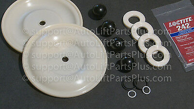 "Fluid Section Repair Kit for Graco 1040 Husky 1"" Diaphragm Pump D07525 D07-525"