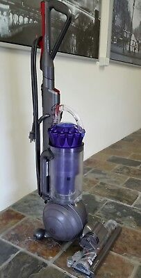 Dyson DC41 Animal upright vacuum cleaner Pick up from 4173 Tingalpa