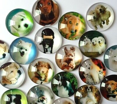 Dog Breeds Handmade Glass Cabochons | Mixed Designs | Choice of 8 Sizes
