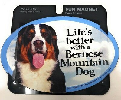 LIFE'S BETTER WITH AN BERNESE MOUNTAIN DOG MAGNET ,Gifts, Cars, Trucks. Lockers
