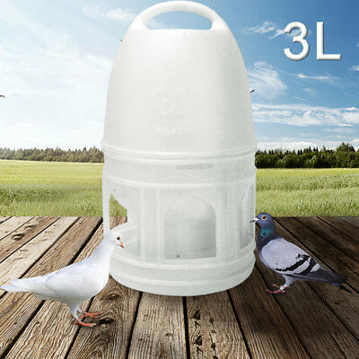 US 3L White Plastic Drinker Pigeons Birds Accessories Feed Suppliers w/ Handle