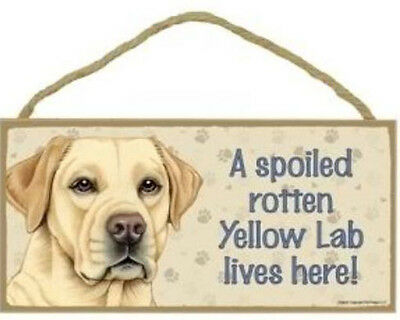 """Spoiled Rotten Yellow Lab Lives Here Sign Plaque Dog 10"""" x 5"""" Labrador"""