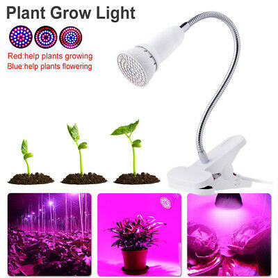 Red/blue Spectrum E27 E26 Led Growing Light Lamp For Indoor Plant Vegetables A4