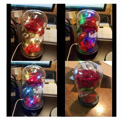 Beauty and TheRed Rose Red Rose Beauty & the Beast LED Glass Dome Enchanted