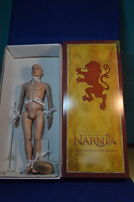 Tonner Doll Peter Pevensie Chronicles of Narnia Nude Doll Re-Wig Ready