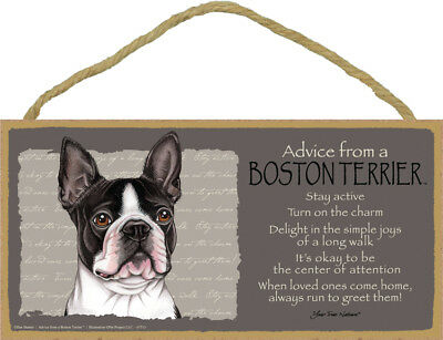 "Advice from a Boston Terrier Sign Plaque Dog 10"" x 5"" gift"