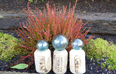 #1  Vintage Japanese wood and Glass Fishing Float Combo