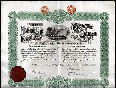 1905 The North Egypt Land Company - uncancelled with 20 coupons