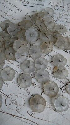 FABULOUS BATCH 50  ANTIQUE FRENCH 1920s PETITE GLASS FLOWER LUSTRES FOR PROJECTS