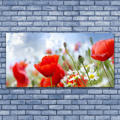 Glass print Wall art 140x70 Image Picture Poppies Daisies Floral