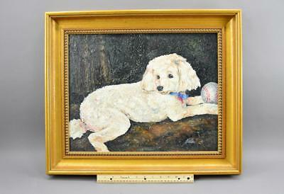 20th C Oil On Canvas Of Dog Signed Shea Excellent Gilt Frame No Reserve