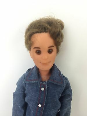1973 Sunshine Family Doll Mattel Vintage Dad Figure Steve w/ Curly Afro