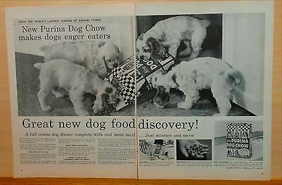 1957 two page magazine ad for Purina - Springer spaniel pups & Purina Dog Chow