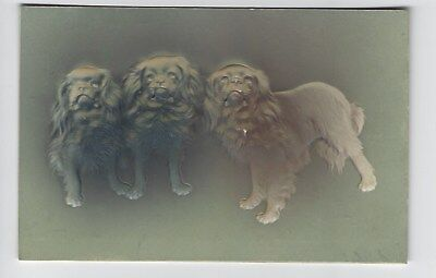 Embossed image of 3 Cavalier type dogs