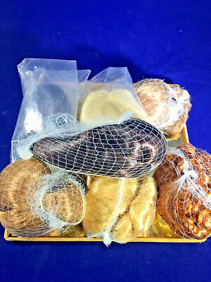 """Madame Alexander Accessories MIX WIGS LOT OF TEN for 8"""" - 10"""" dolls  new"""