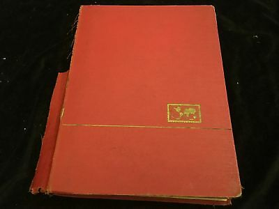 Romania 19th Century Onwards in Stockbook, 99p Start, All Pictured