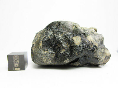 NWA x Eucrite 71.27g Meteorite Individual of a Eucrite Under Study