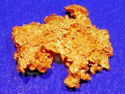 One Stunning Australian Gold Nugget ( 1.21 grams ).