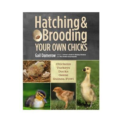 Hatching & Brooding Your Own Chicks by Gail Damerow