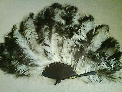 Antique Victorian OSTRICH Feather Fan