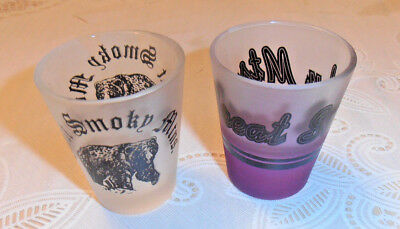 2- Vintage & Rare Great Smoky Mts. Mountains  Shot Glass Lot Gorgeous
