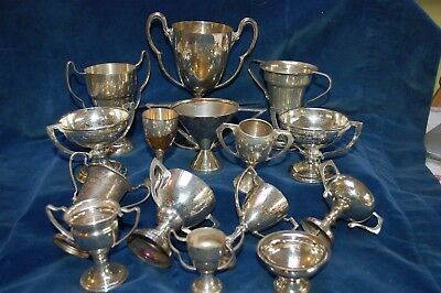 15  Various Silver Plated Sporting Trophy Cups / Awards