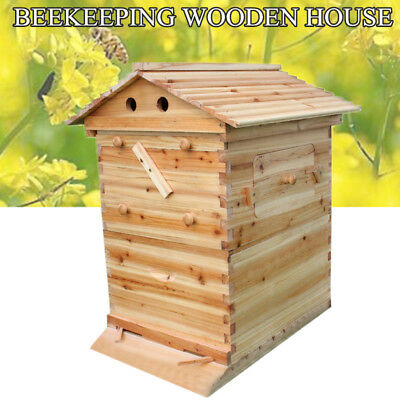 1 wabe automatische honigproduktion bienenhaus bienenstock imkerei ca flow hive eur 84 00. Black Bedroom Furniture Sets. Home Design Ideas