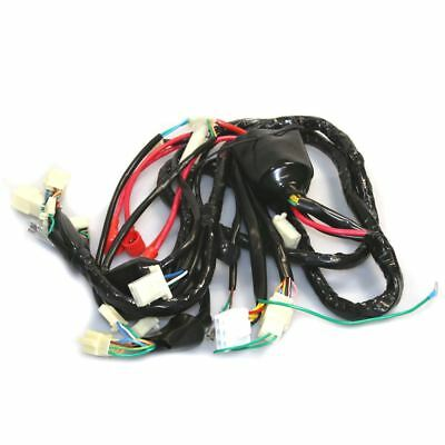 Wiring Loom for Lexmoto FMS 125 ZN125T-7H 14-16