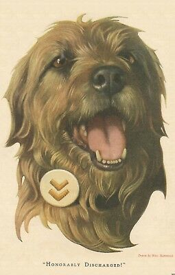Hero WWI Irish Wolfhound Military War Dog Will Rannells Poster Print Vtg Ad 1242