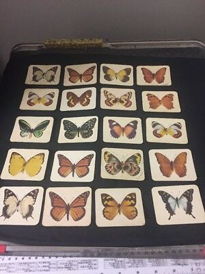 Assorted Lot Butterflies Of Australia Collectors Cards Nabisco Sunday Market