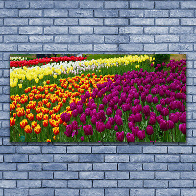 Photo sur toile Image Tableau Impression 140x70 Floral Tulipes