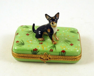 NEW FRENCH LIMOGES TRINKET BOX CUTE CHIHUAHUA DOG Puppy ON grass with flowers