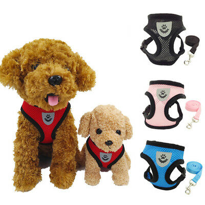 Soft Air Mesh Small Dog Cat Harness and Lead Set Adjustable Puppy Vest w/
