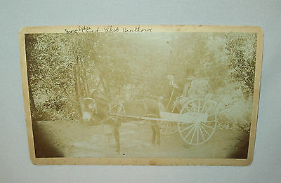 Old antique vtg 1870's mounted cabinet card photo Two Men in Donkey Cart