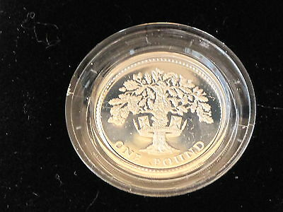 1987 United Kingdom Sterling Silver Proof One Pound E0417